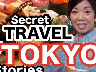 Thumbnail Secter Japan E2 cropped